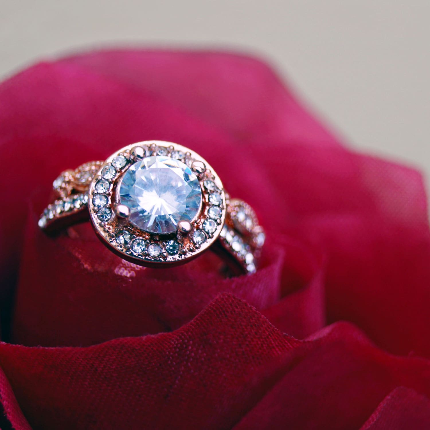 diamond ring inside a red rose